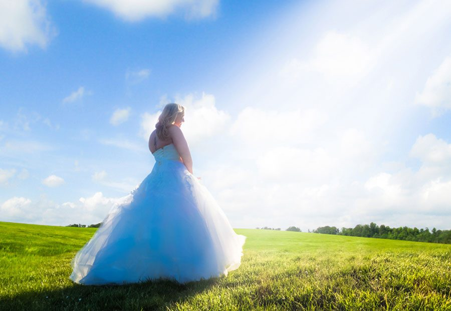 Interview: Fred Henaux Wedding Photography