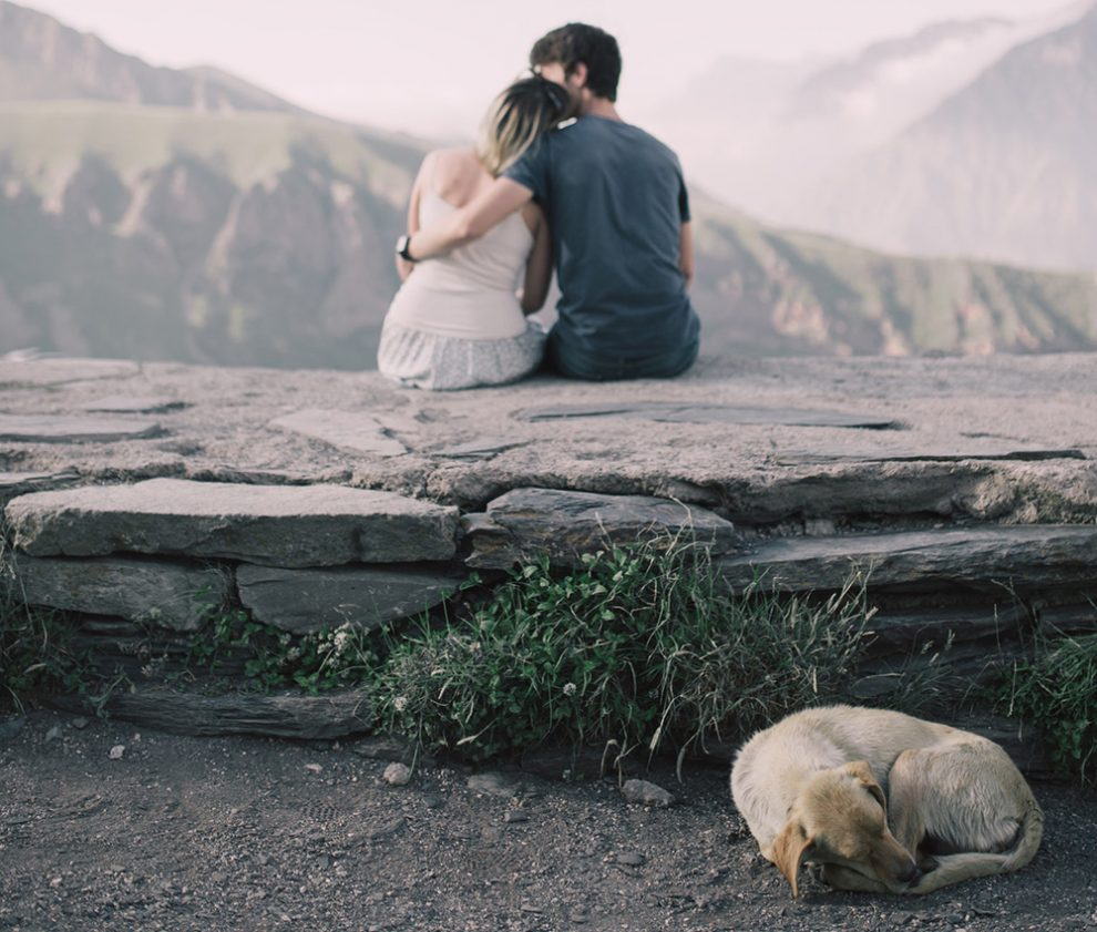 Pet Dog Engagement Shoot