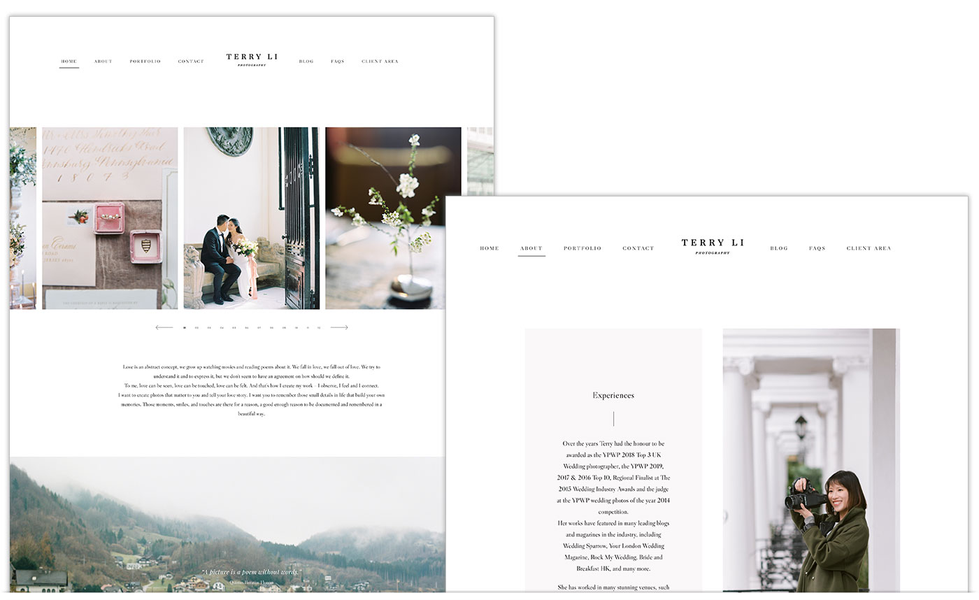 Terry Li Website Design